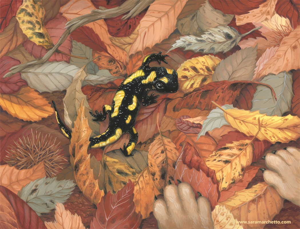 salamander gouache painting with leaves and dog