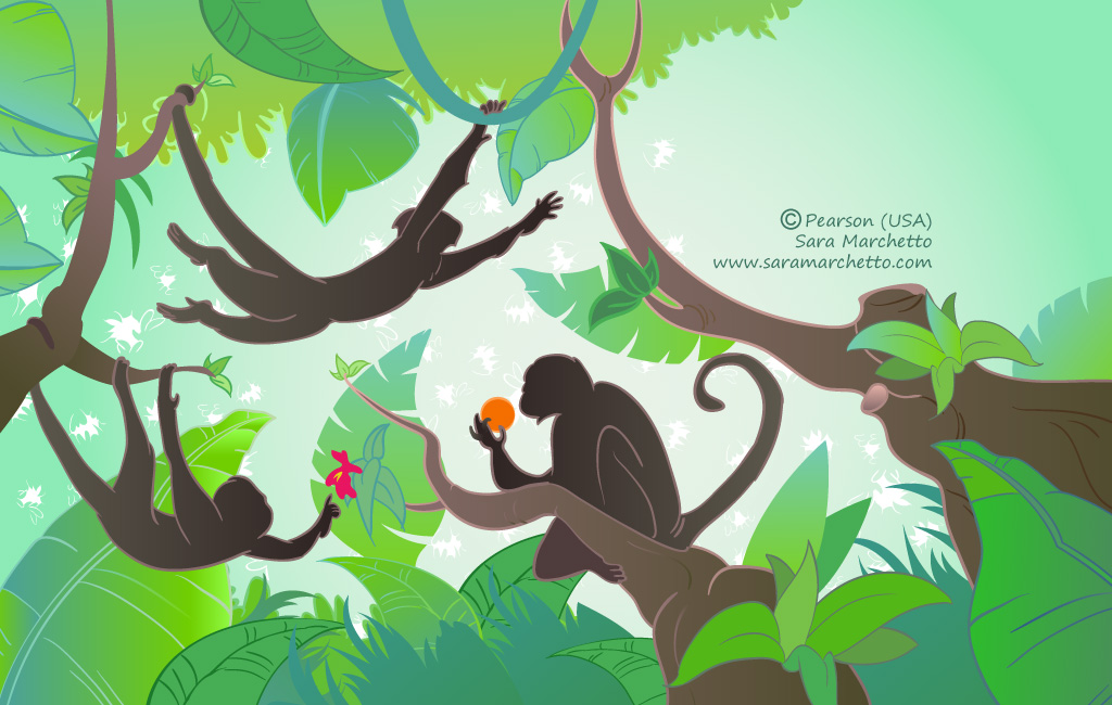 Vector illustrations for a kids story